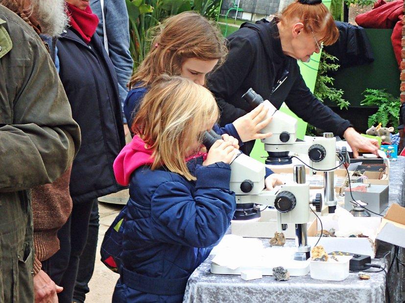 Exponate unter dem mikroskop für kinder